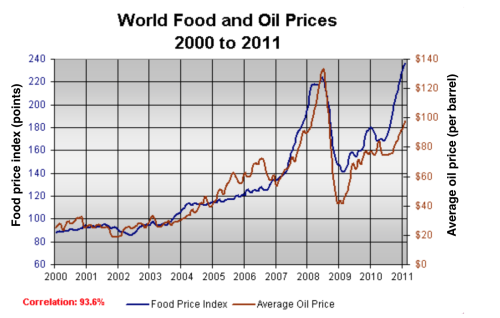 Image result for THE GRAPH BELOW SHOWS THE CHANGES IN GLOBAL FOOD AND OIL PRICES